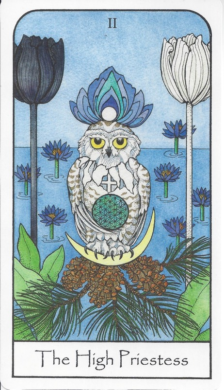 Tarot ReflectionsMarch 2016